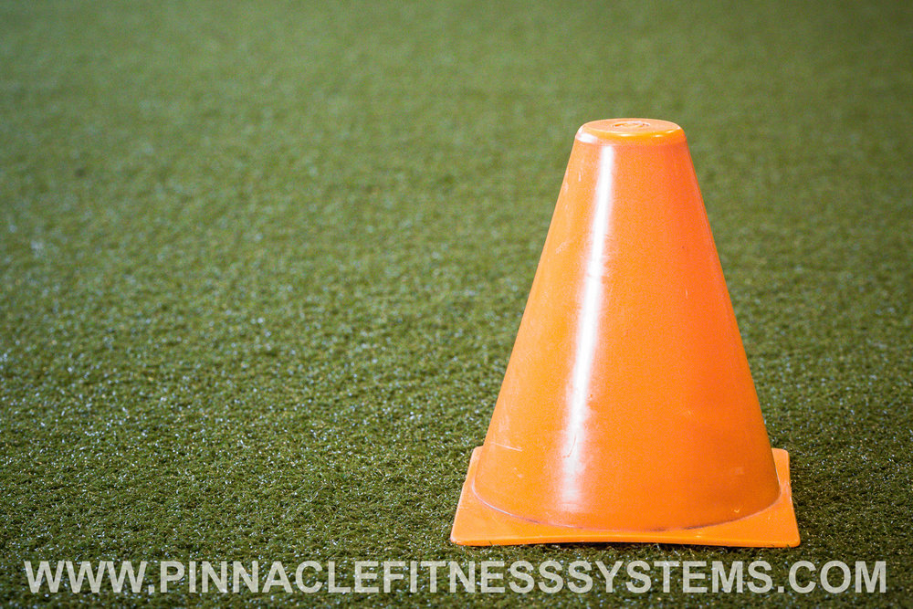 PFS-Farm-Gym-Gibsonia-Ecore-Speed-Agility-Turf-4.jpg