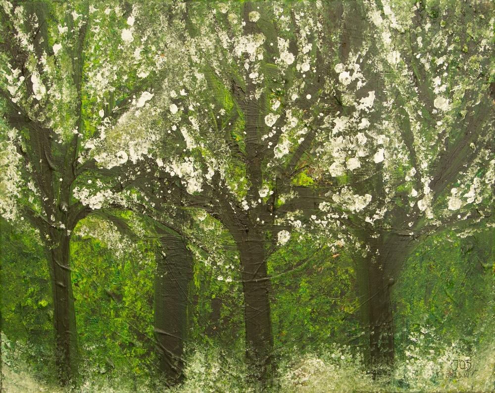 """""""Blossom"""" 2014"""