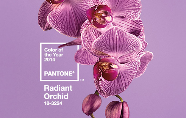 Pantone Color of the Year, 2014 - Radiant Orchid