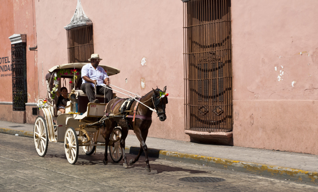 LaurenCaron©Mexico0603_23(sml)
