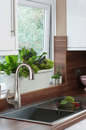 KitchenSolutions-Herb-450h.jpg