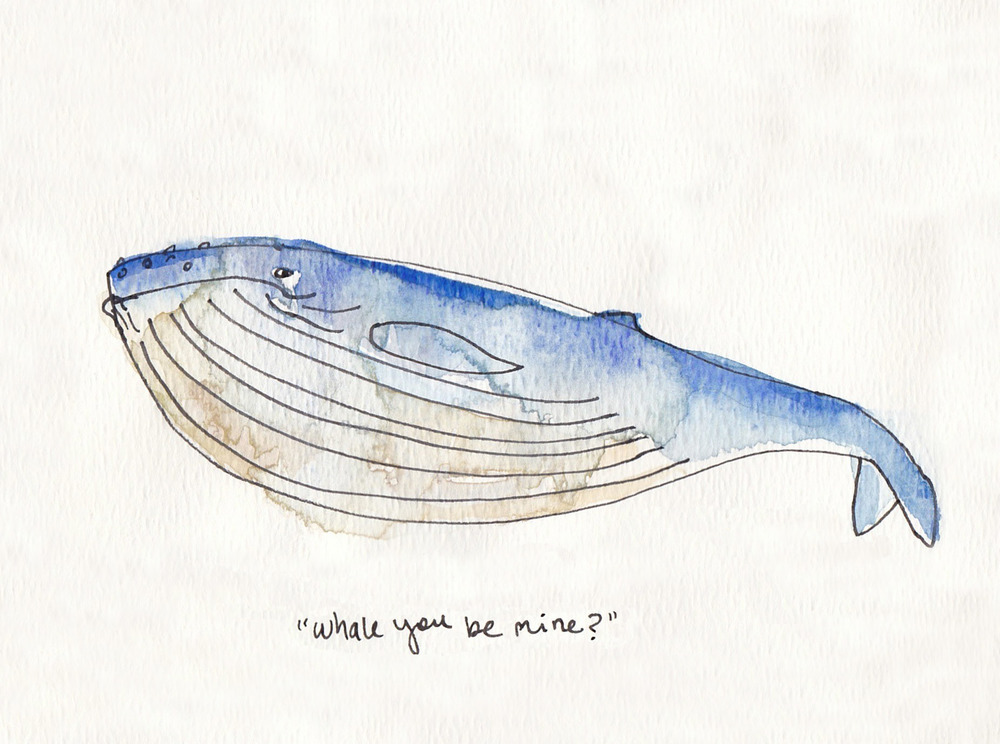 whale_large_crop copy copy.jpg