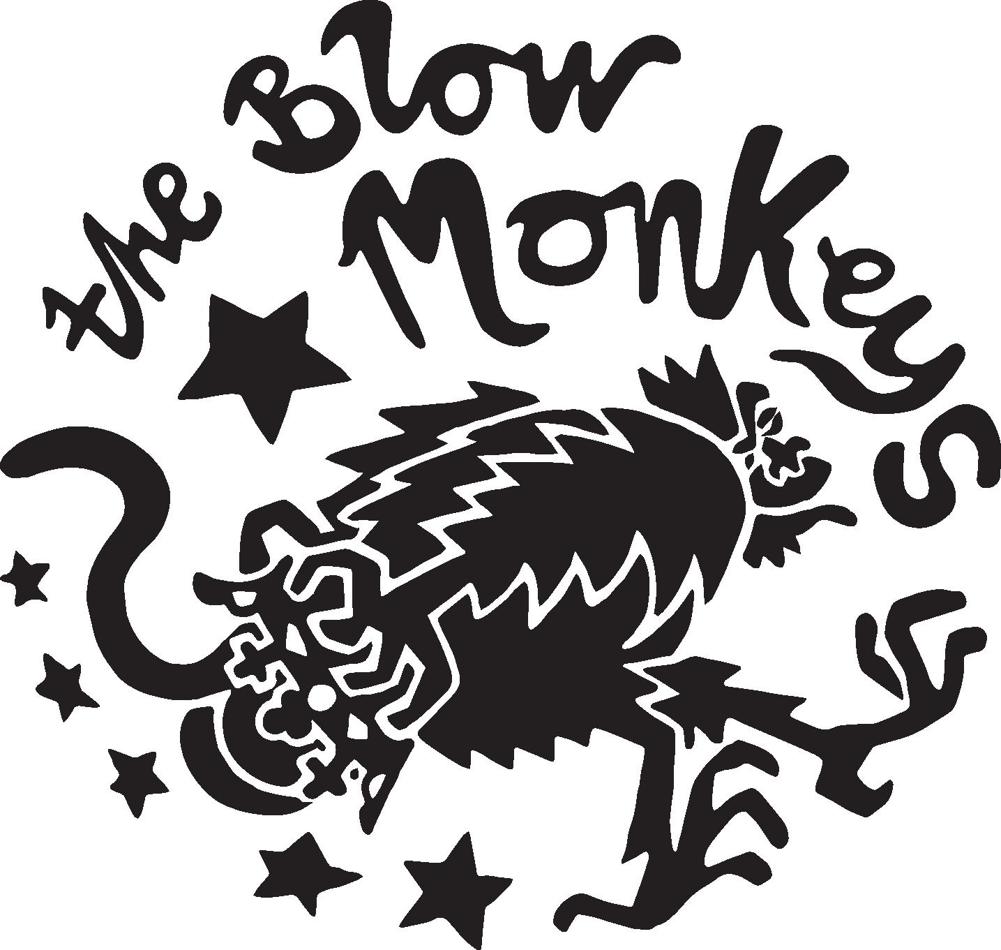 Biography — The Blow Monkeys