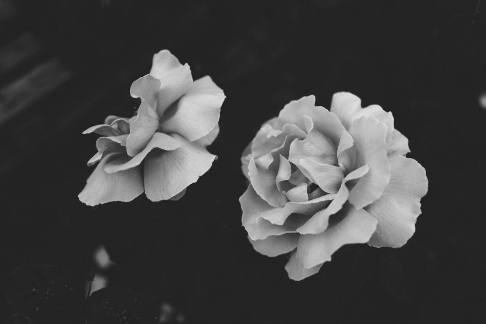 Ciara & Braham184.jpg