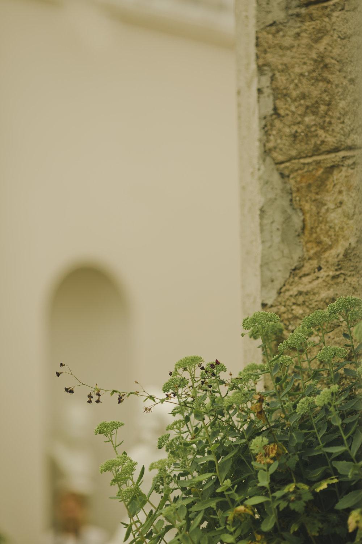 Ciara & Braham547.jpg