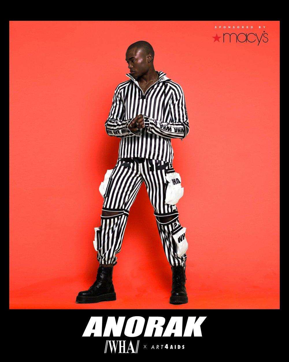 ANORAK 3.jpg