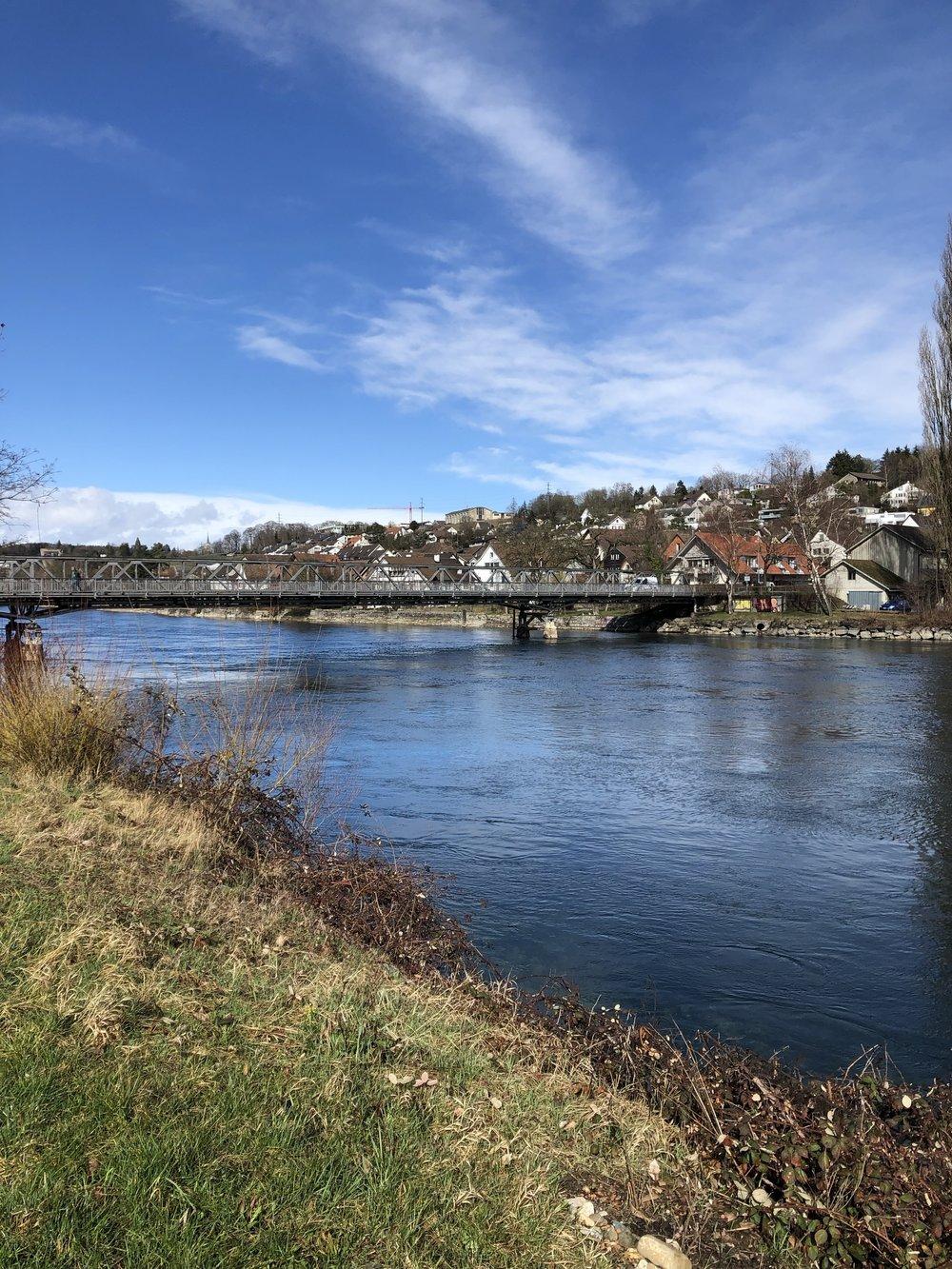 Der Rhein (Foto: zvg.)