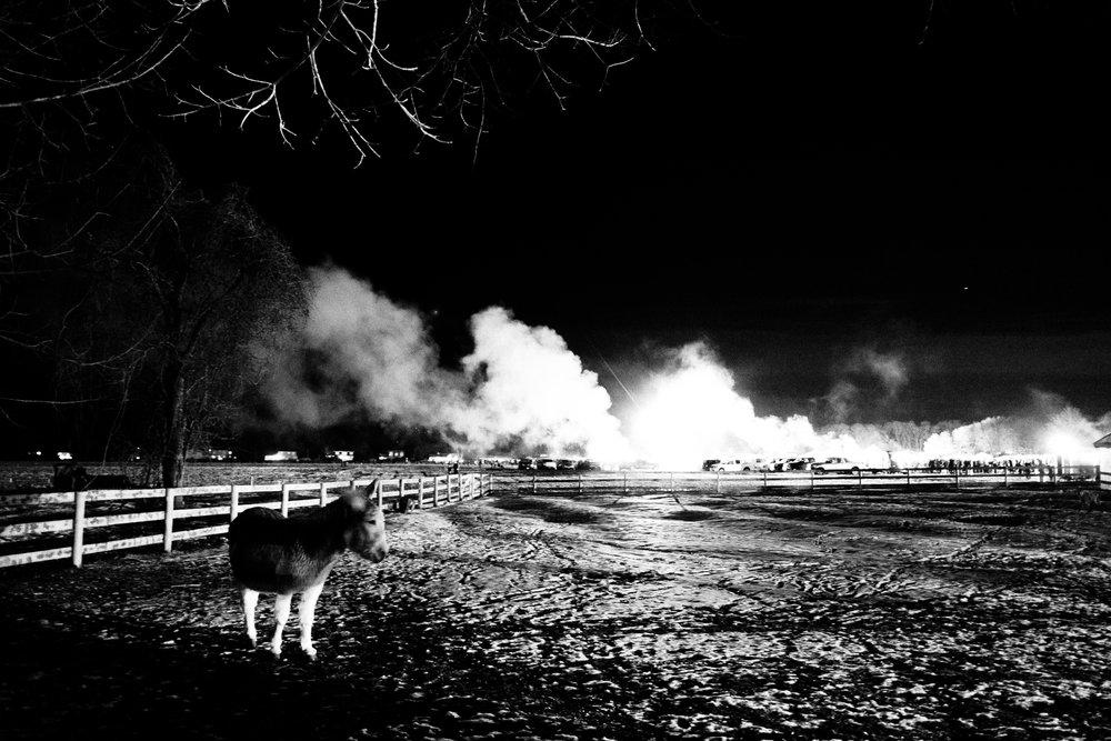 Bonfire-10.jpg