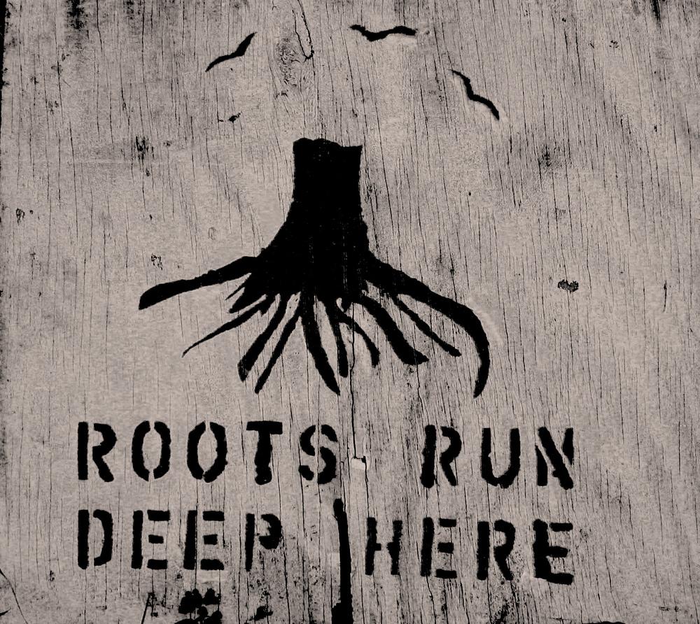 roots_run_deep.jpg