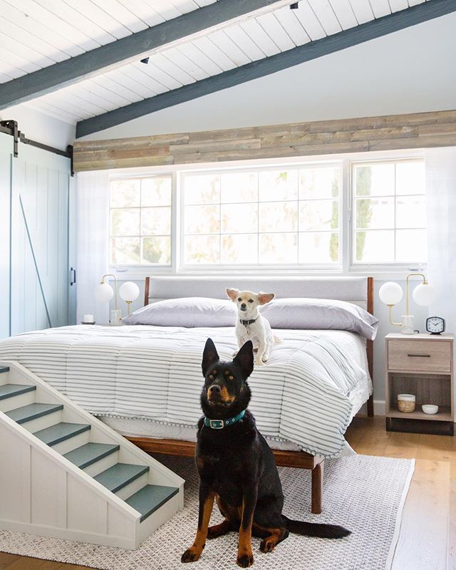 Another great episode of The Weekender for @loweshomeimprovement just dropped!  We did this epic master bedroom for @katy and her pups! (Yes those are little tiny mini baby doggie stairs) To watch the ep click on the link in our bio. . . #theweekender #lowespartner #production #LA #lustrelux #masterbedroom #dogsofinstagram #eastcoastcreative #ec2productions