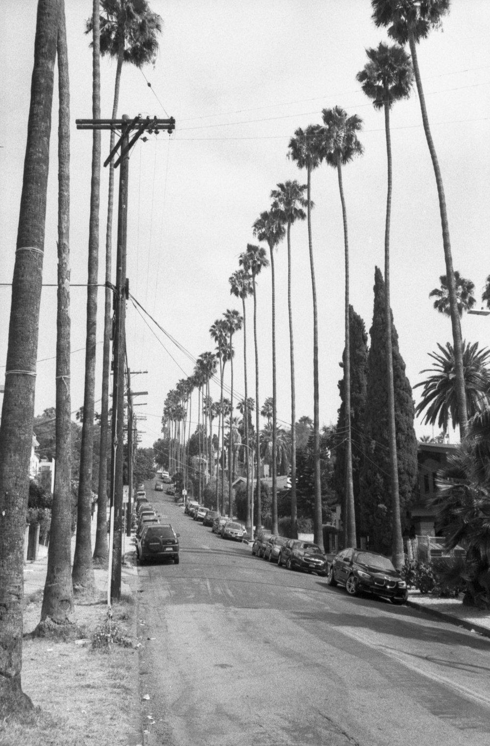 Los_Angeles_2016_003.jpg