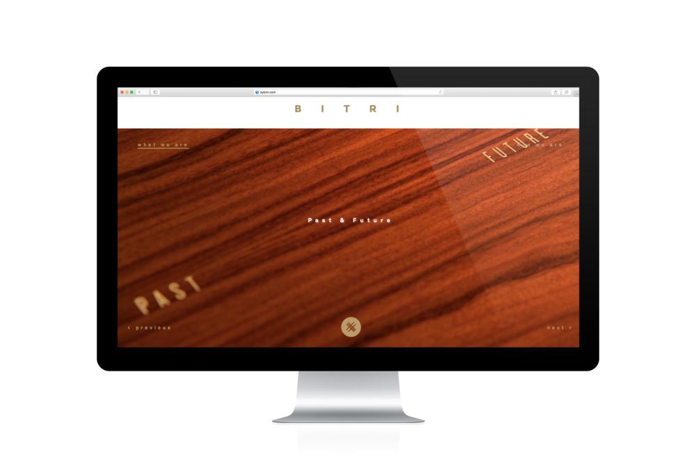 BITRI_web Portfolio7.png