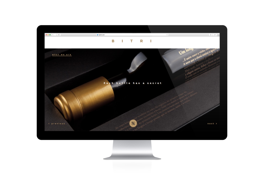 BITRI_web Portfolio4.png
