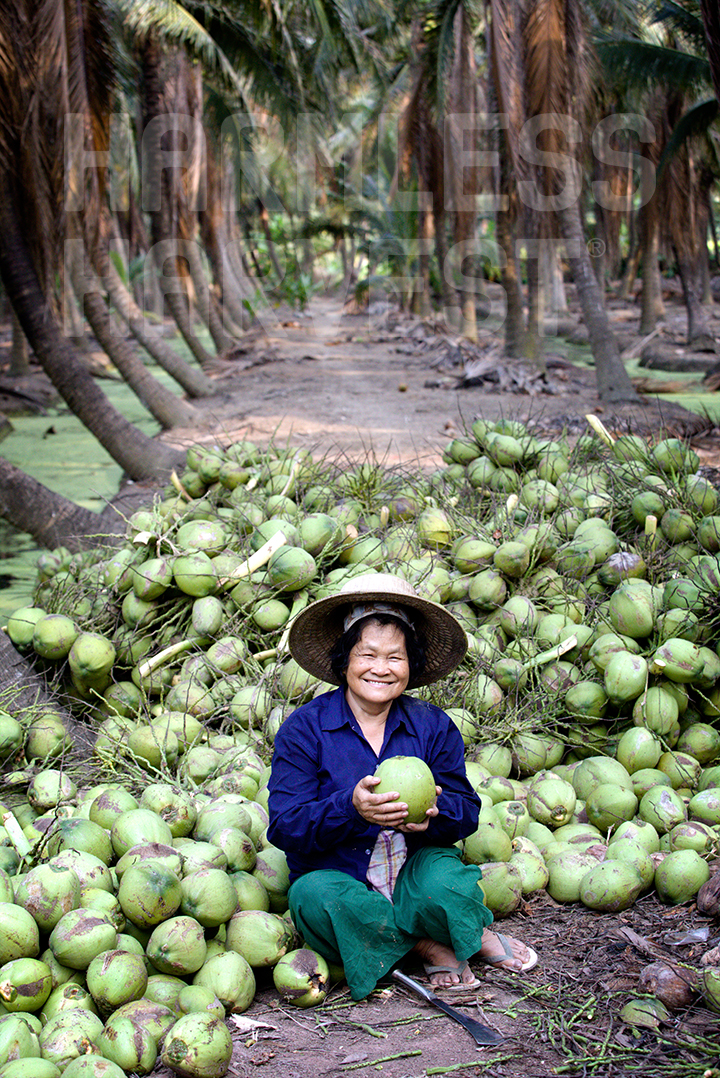 Coconut Water - Organic Fair Trade | Harmless Harvest ...