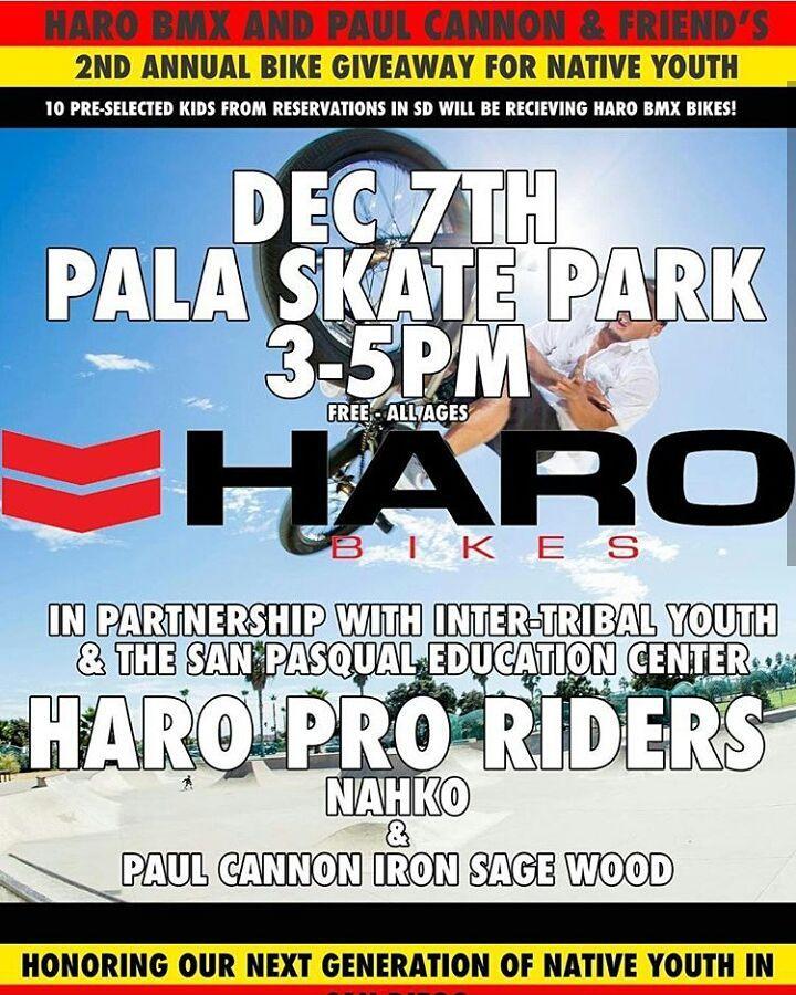 Haro Flyer ITY giveaway.jpg