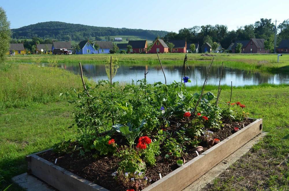 Garden boxes at Boiceville apartments