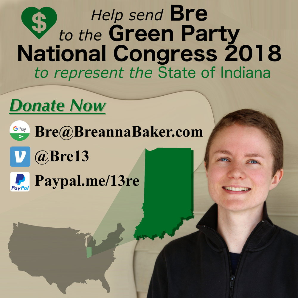 Green Party National Congress Crowdfunding Instagram 1.JPG