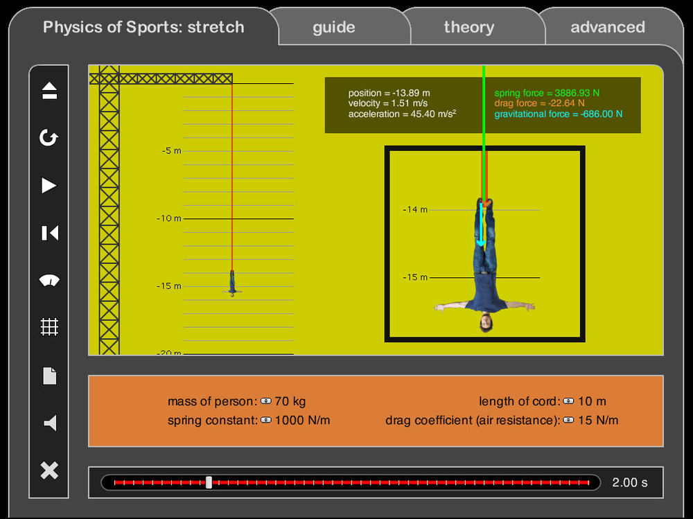 Bungee Jump: Force & Acceleration Analysis