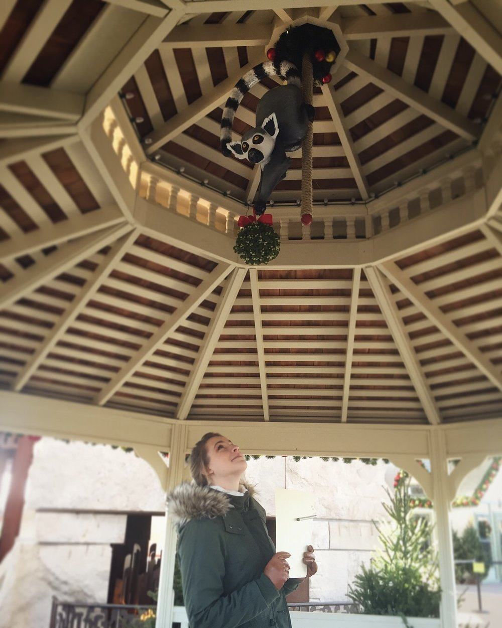 Indianapolis_Zoo_Lemur_Gazebo_Christmas