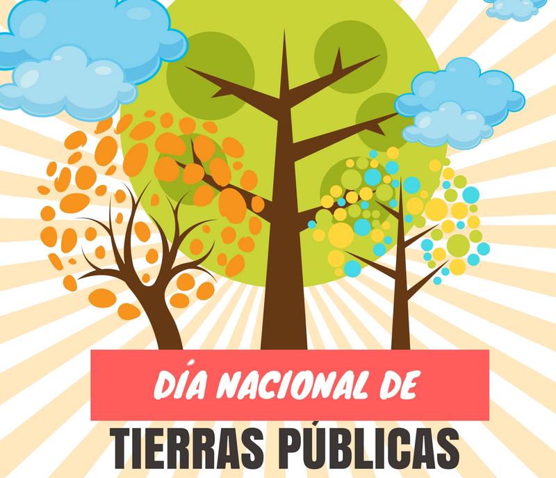 wwww.descubreelbosque.org