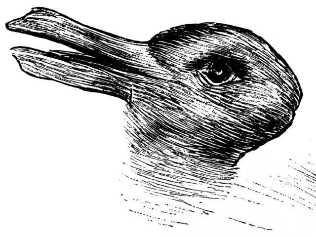 Imagen 1.jpg