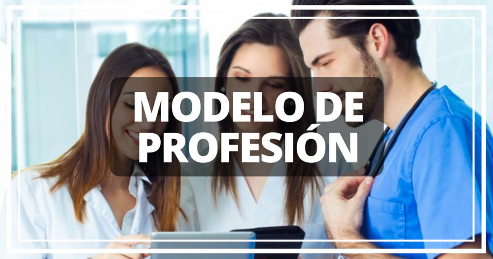 modelo de profesion.png