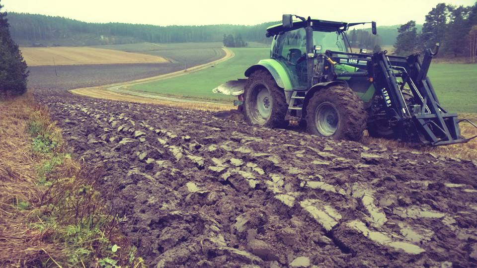 Siementuotannossa kyntö on varmin tapa varmistaa seuraavan vuoden kasvustojen lajipuhtaus eli ettei edellisen vuoden viljaa kasva uuden tuotettavan siemenen sekaan. Eli kyntö ei ole suinkaan menneen satovuoden viimenen toimenpide pellolla, vaan tulevan vuoden ensimmäinen.