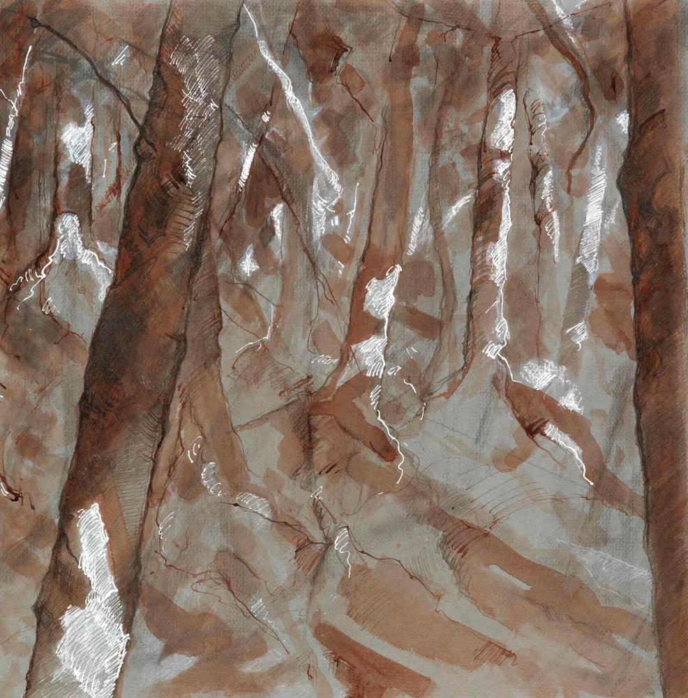Slanted Landscape, Study #42