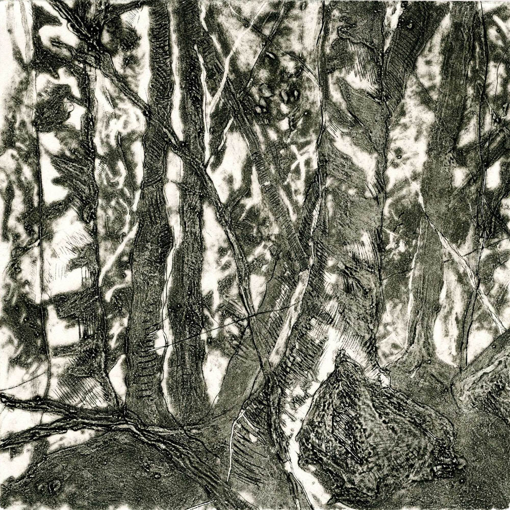 Woods Interior, #1, Suite of 4 prints