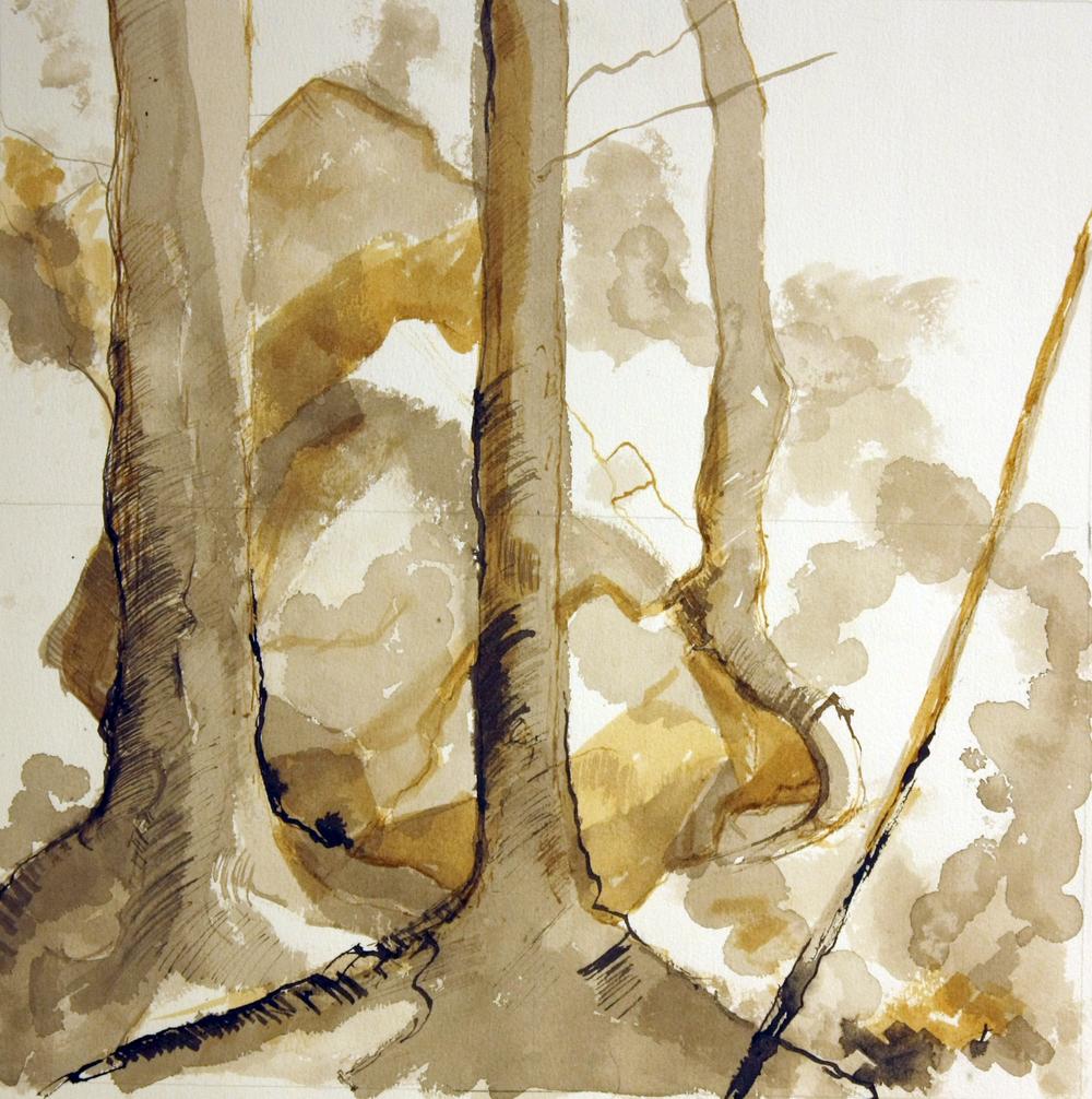 Study of Three Trees