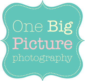 One Big Picture Photography