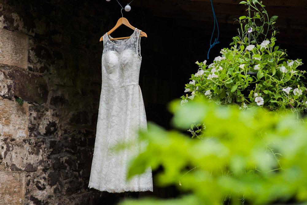 Dragonfly Dress Design