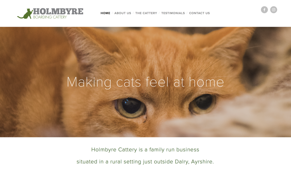 Holmbyre Boarding Cattery Website Homepage Example