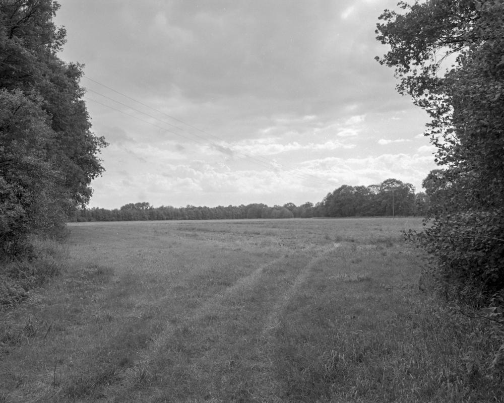 Farm 2011 - 014c.jpg