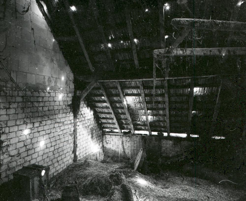Farm 2011 - 012.jpg