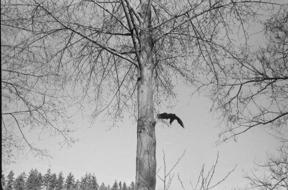 Leica 2015 - 026.jpg