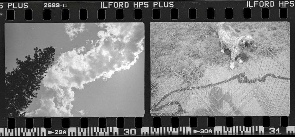 Leica139.jpg