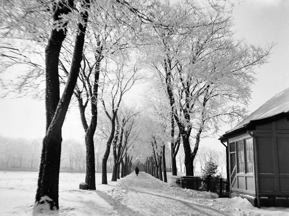 Sweden_0031sharp.jpg
