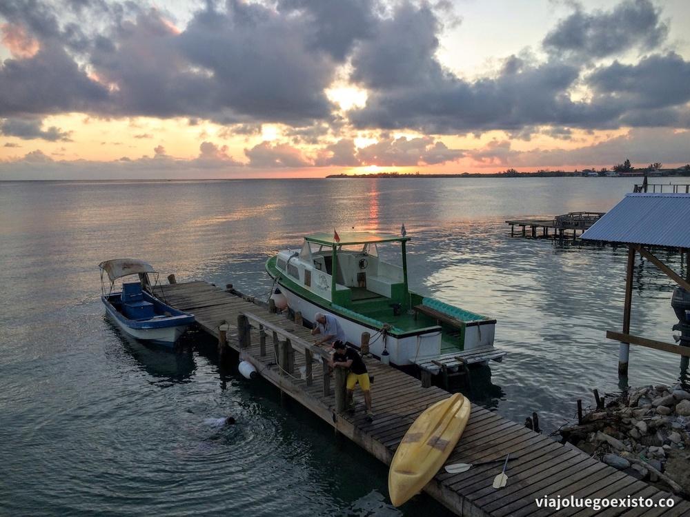 Muelle de Paradise Divers