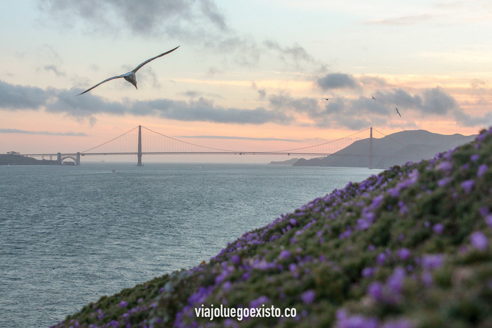 El mítico puente Golden Gate en San Francisco, visto desde Alcatraz.