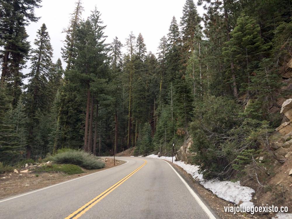 Carreteras con mucho encanto alrededor de Mariposa Grove
