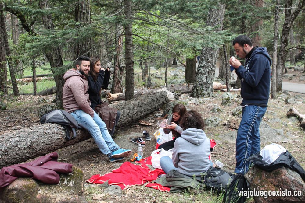 De picnic en Bridalvale Fall