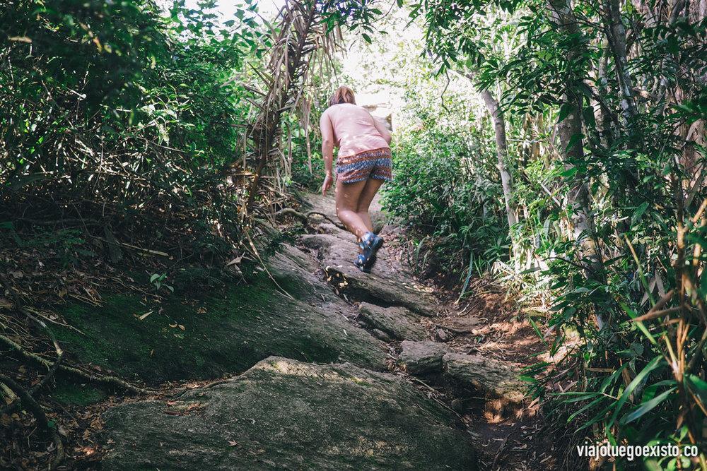 Parte del camino que lleva a Morro Dois Irmãos