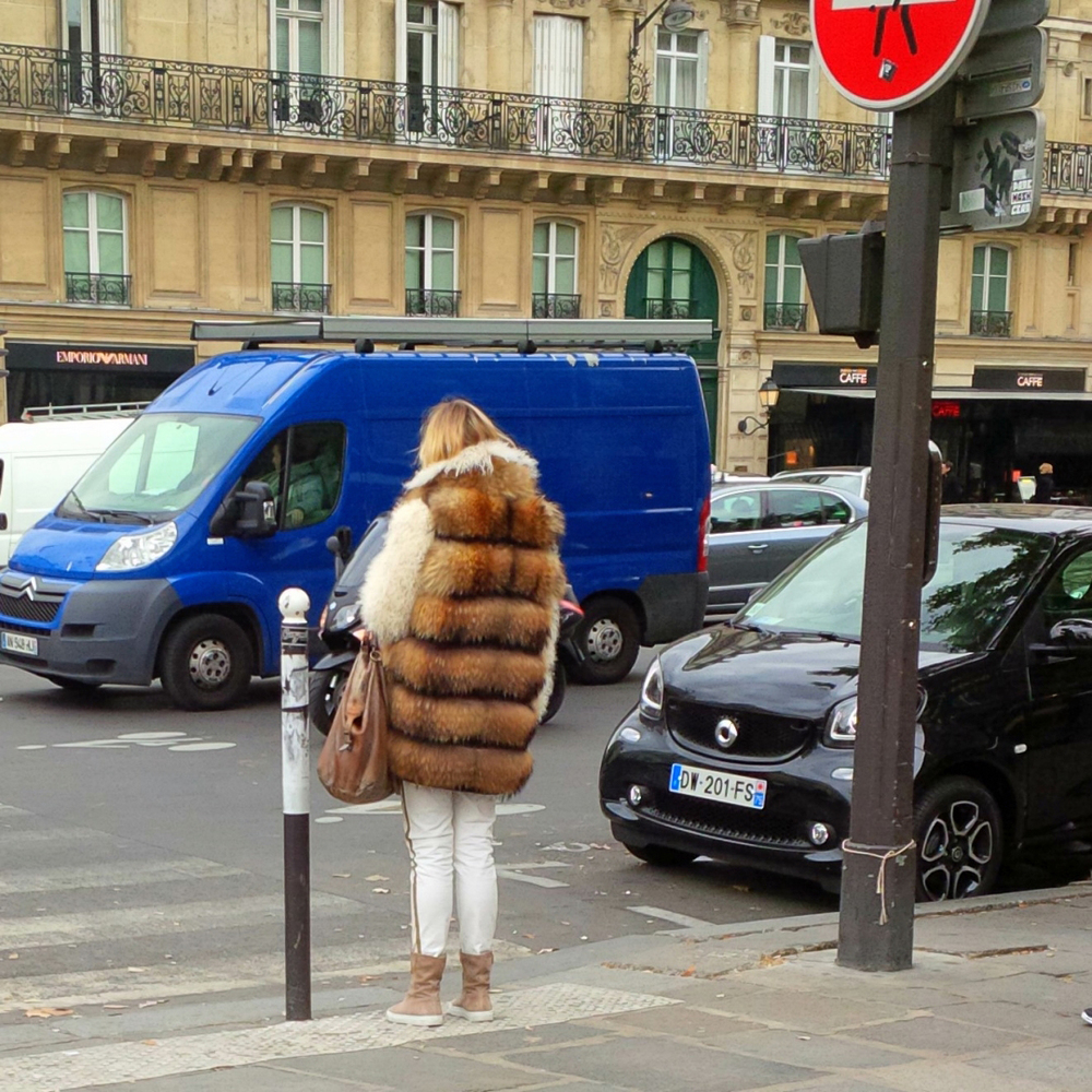 Paris Fur