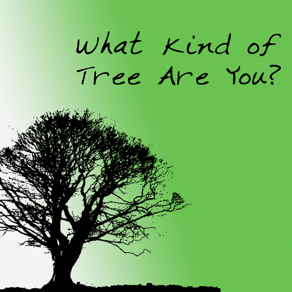 What Kind of Tree are You? -2014 Topic: Fruit of the Spirit