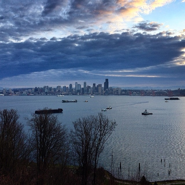 Elliot sure is busy this morn.. #seattle