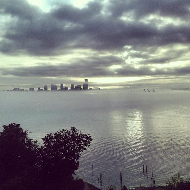 Sleepy / Foggy Seattle