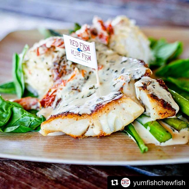 🍽😋 It's called the YUM Fish Gulf Catch for a reason.  via Red Fish Blue Fish 🎏 (@yumfishchewfish)