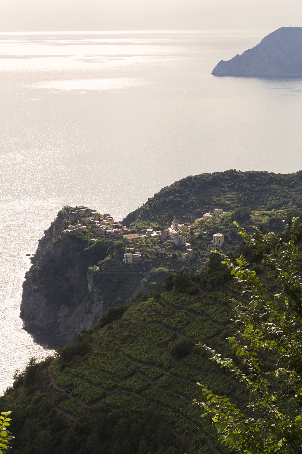 Looking down on Corniglia in the beautiful late afternoon sun.