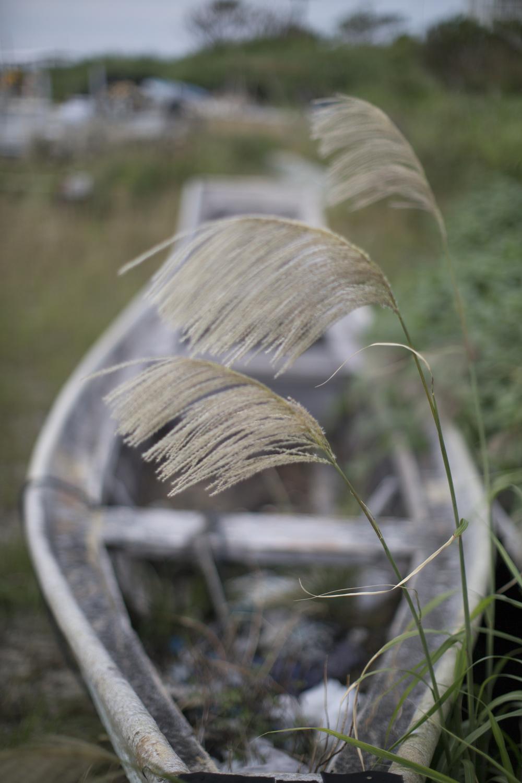 Abandoned fishing boat.